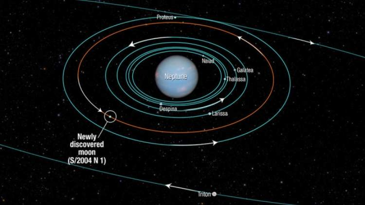 Neptune- Calender-Is-Out-Only Six-Months-In-A-Year-From-2020-More-Stories-DKODING