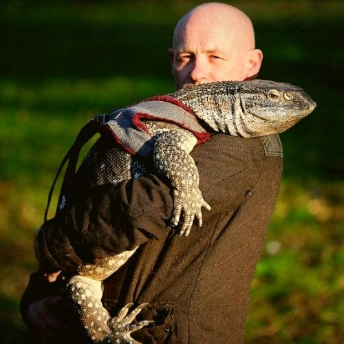 derby-man-with-giant-lizard-features-DKODING