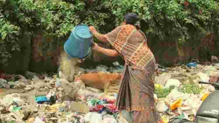 littering-on-chandigarh-streets-more-stories-DKODING