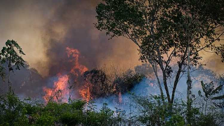 Brazil says No to G7 aid of USD 22 million to tackle Amazon wildfires