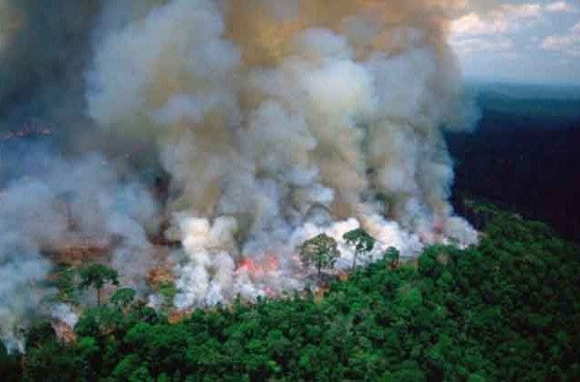 Amazon-Rainforest-Smoke-Trending-Today-DKODING