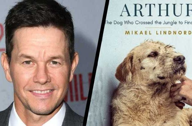 Arthur-the-King-Mark-Wahlberg-Acting-Hollywood-Entertainment-DKODING
