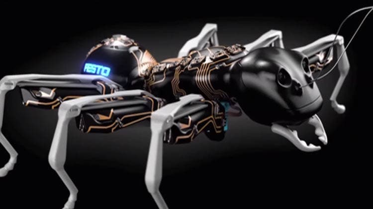 Artificial-Ants-Will-Fix-Injuries-In-Body-NewsShot-DKODING