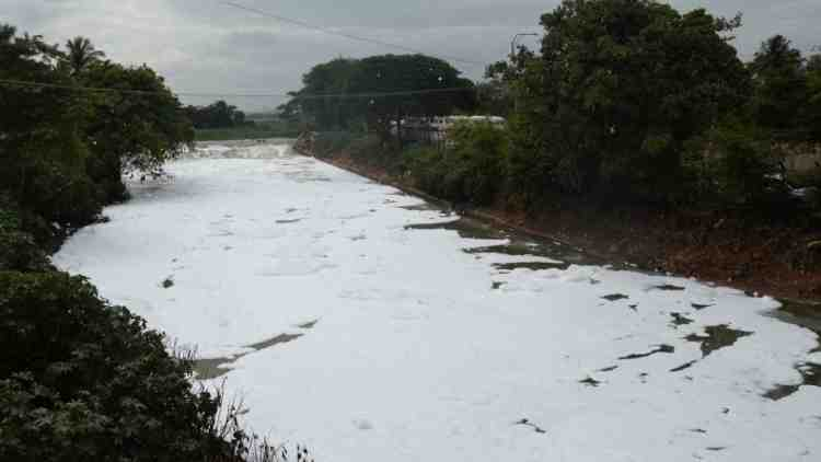 Bengaluru-Lake-Foam-More-News-DKODING