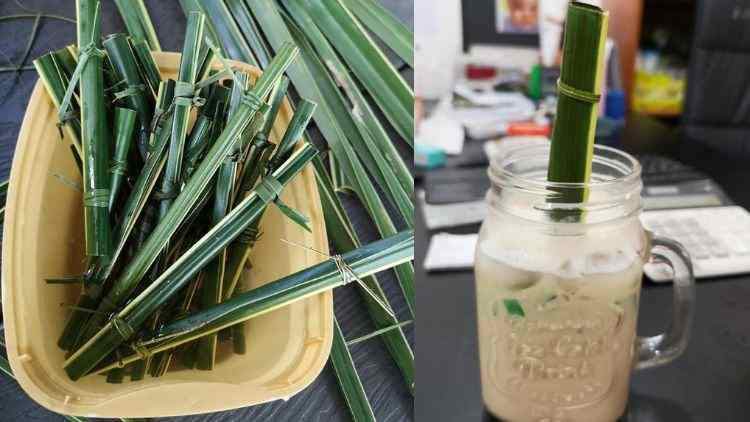 Cafe-Editha-Introduced-Eco-Friendly-Straw-Made-Of-Coconut-Leaf-More-Stories-DKODING
