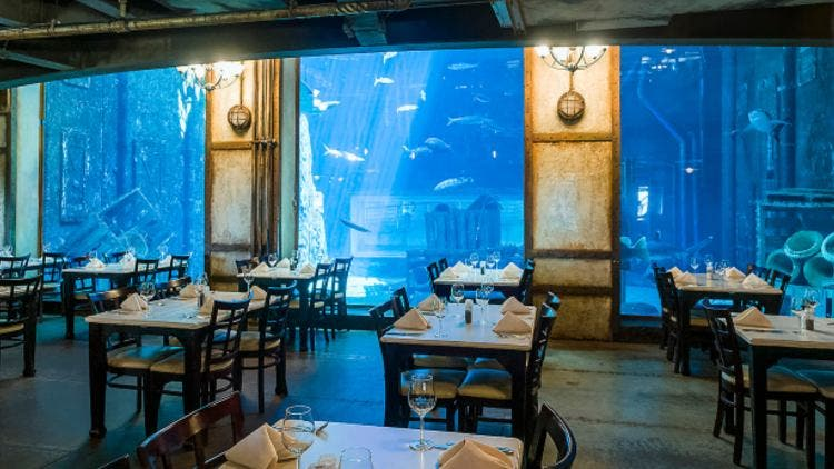 Cargo-Hold-Restaurant-South-Arica-Lifestyle-Food-&-Travel-DKODING