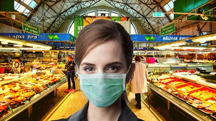 Your Guide To Coronavirus-Free Grocery Shopping