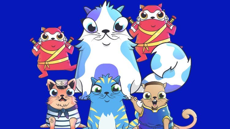 CryptoKitties: What's All The Fuss About?