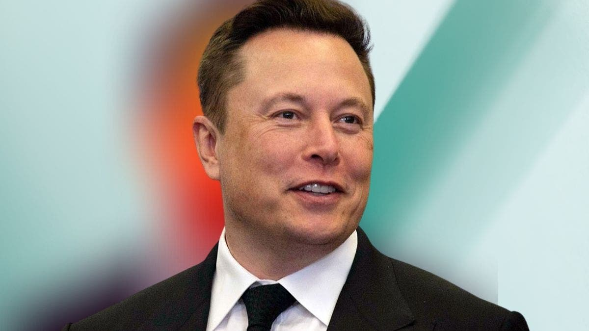 Elon Musk Biography — Every Single Detail About The World's Most Wanted Entrepreneur