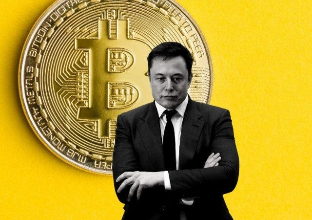 Bitcoin Is Not Musk Coin: Markets Will Learn, Experts Say