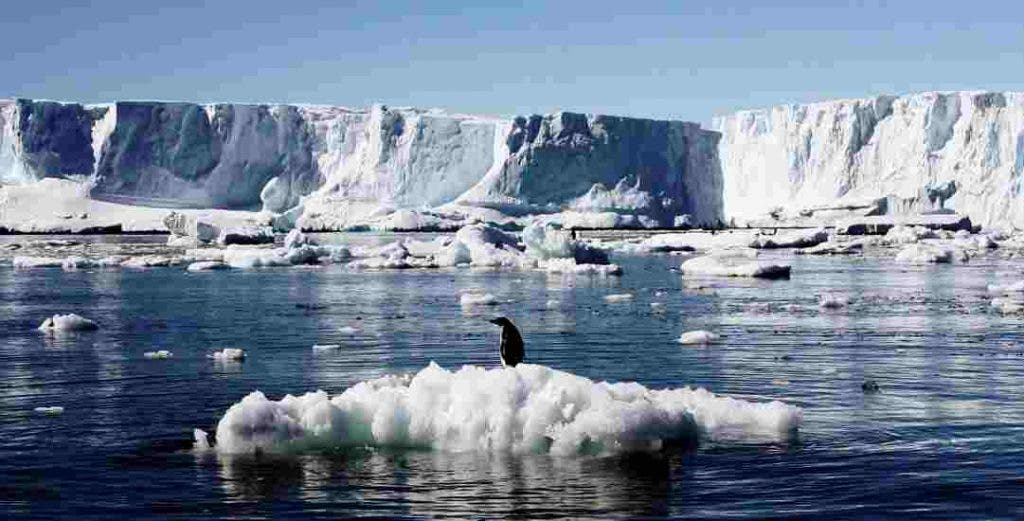 DKODING | Newsshot | The West Antarctica's glacier continuous to melt because of climate change