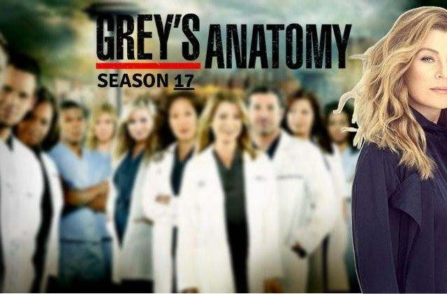 Grey's Anatomy Season 17 2020 DKODING