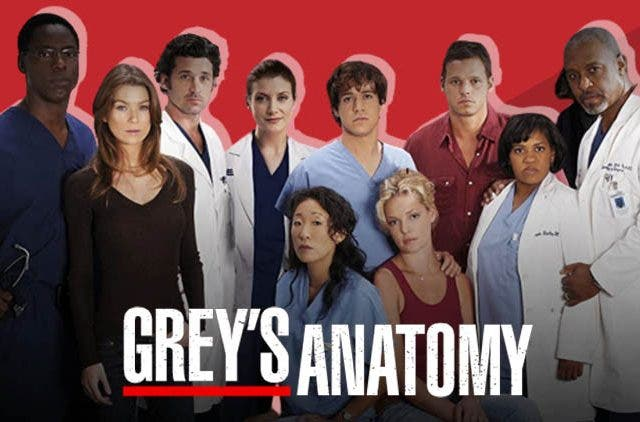 Grey's Anatomy' Season 17