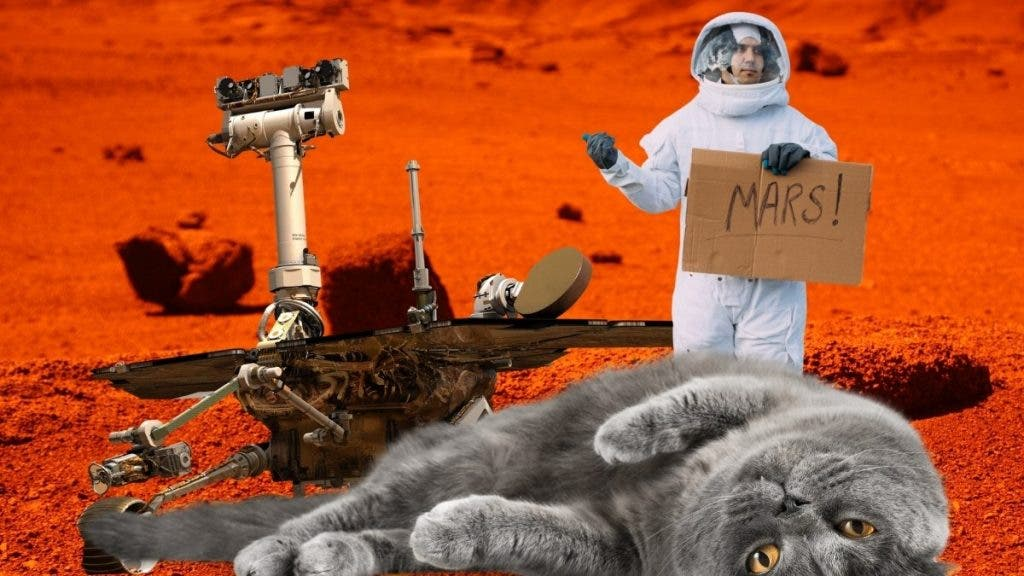 Comparison to Schrodinger's Cat is a fair categorization for the Human quest for life on Mars.