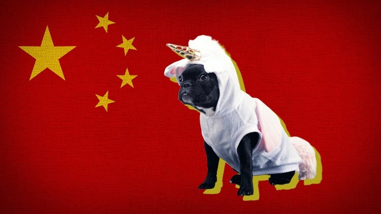 The Unicorn Package: More Than Chinese Money, Indian Startups Will Miss The Perks That Come With It
