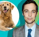 Jim Parsons ditch 'The Big Bang Theory' for his dog?