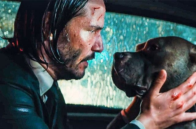 Keanu-Reeves-The-Dog-Whisperer-Entertainment-Hollywood-DKODING