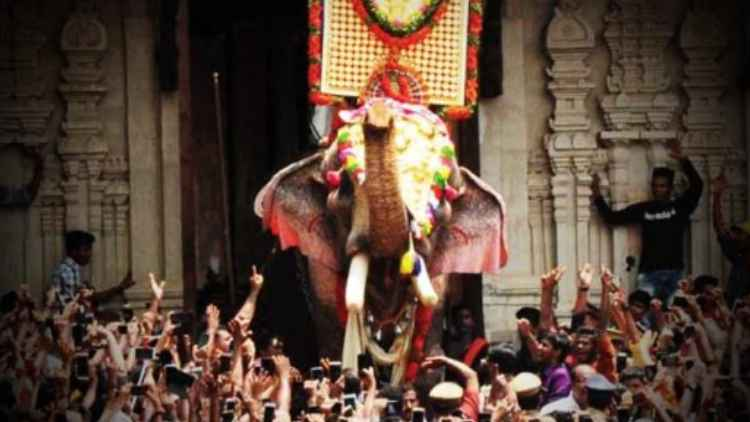 Kerala-HC-Refuses-To-Interfere-In-Ban-On-Thrissur-Pooram-Elephant-India-Politics-DKODING