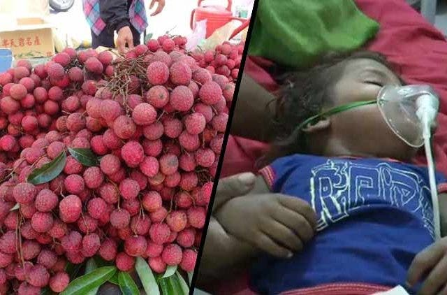 Litchi-Bihar-Odisha-Deaths-More-News-DKODING