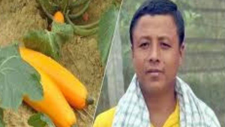 Agriculture, Sustainable agriculture, Subdivisions of India, Articles, Agroecology, Organic farming, Sustainable food system, Organic wine, Farmer, Manipur, Organic food, Farming systems in India, Mayengbam Shyamchandra Meitei, food, agricultural systems
