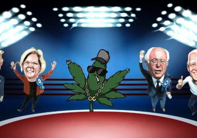For Marijuana Legalization, who should a pothead vote for in US Elections 2020