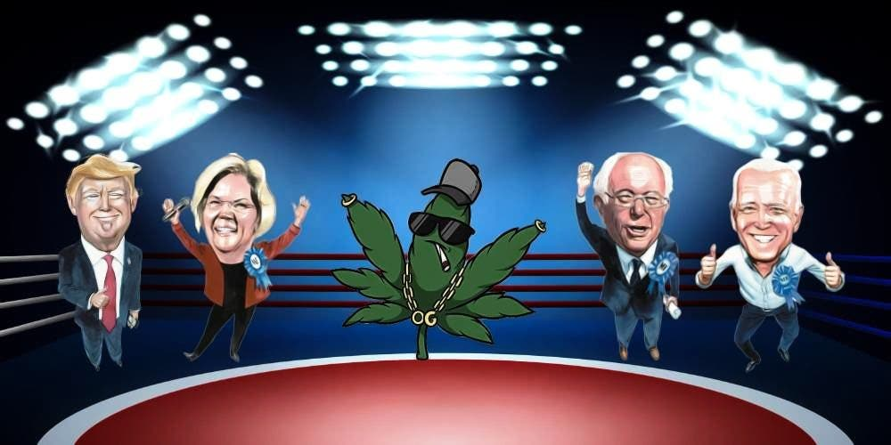Marijuana Legalization: What the 2020 US Election means for a Pothead?