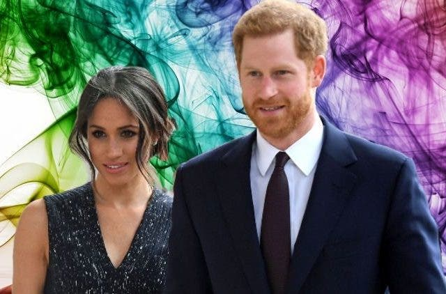 Meghan Markle and Prince Harry ex-royal senior members