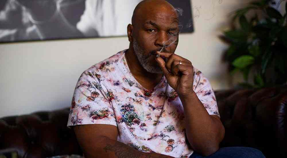 Mike-Tyson-Weed-Resort-Features-DKODING