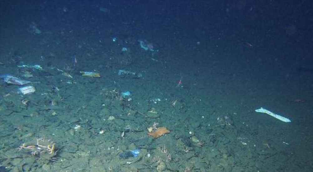 Plastics-Mariana-Trench-Feature-DKODING