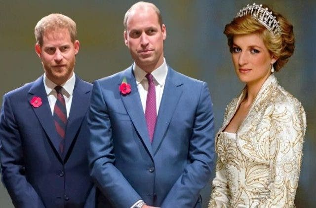 New torment for Prince Harry and William