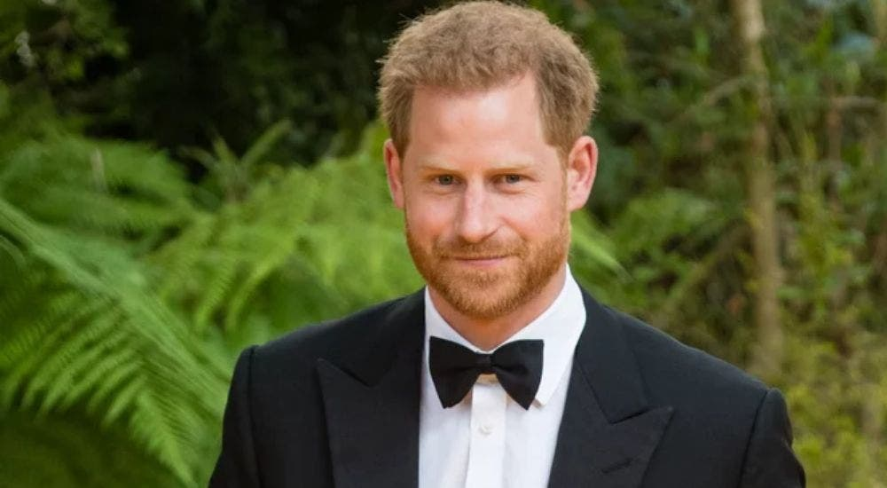 Prince Harry is missing his Royal life