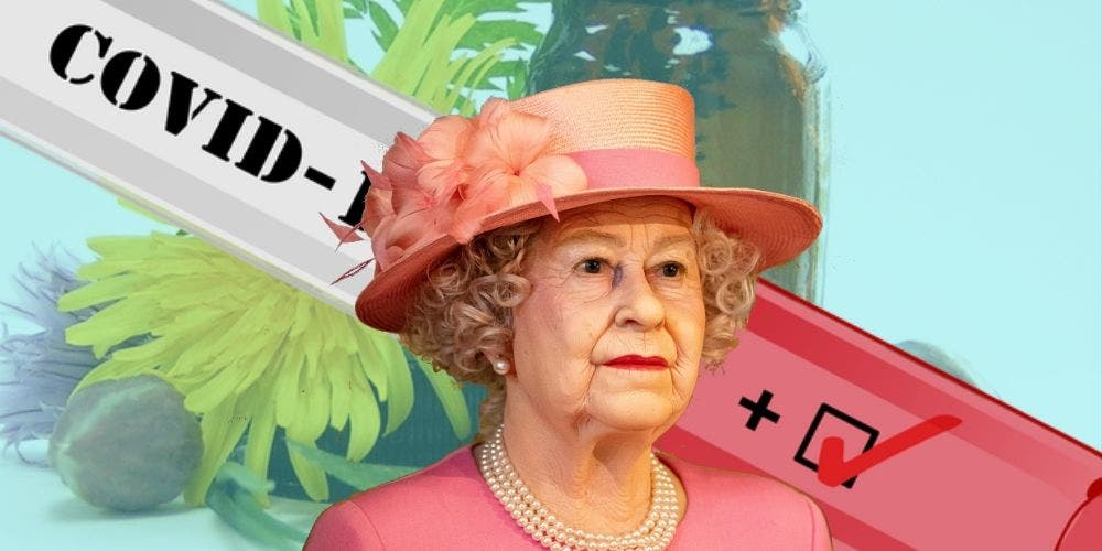 Homeopathy Could Be Delaying Queen Elizabeth's Coronavirus Test