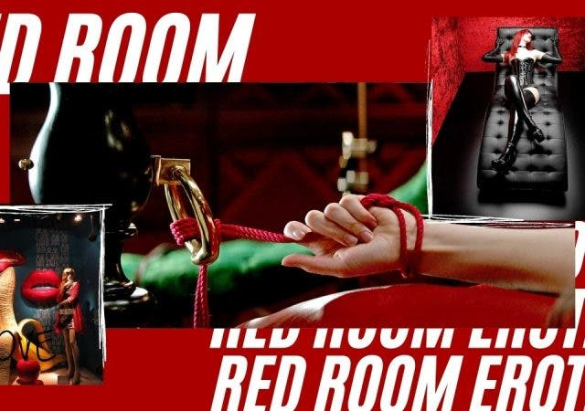 Red Room Erotica Fifty Shades Of Grey Fantasies