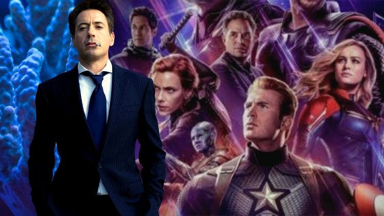 Avengers Endgame Made Chris Evans Rich, But Robert Downey Richer