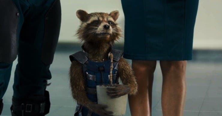 Rocket-Racoon-Guardians-Of-The-Galaxy-Hollywood-Entertainment-DKODING