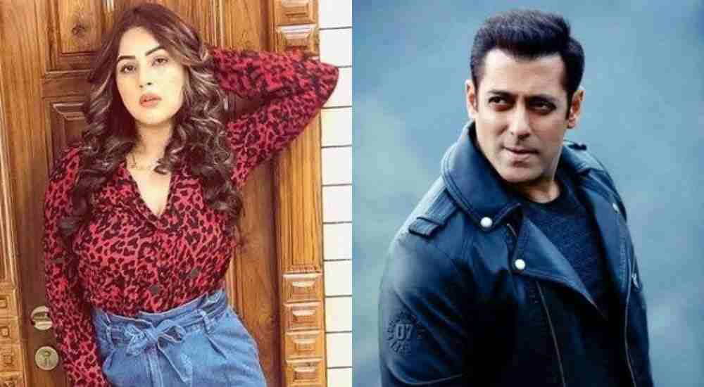 Salman-Khan-Is-Going-To-Launch-Shehnaaz-In-Radhey-Bollywood-Entertainment-DKODING