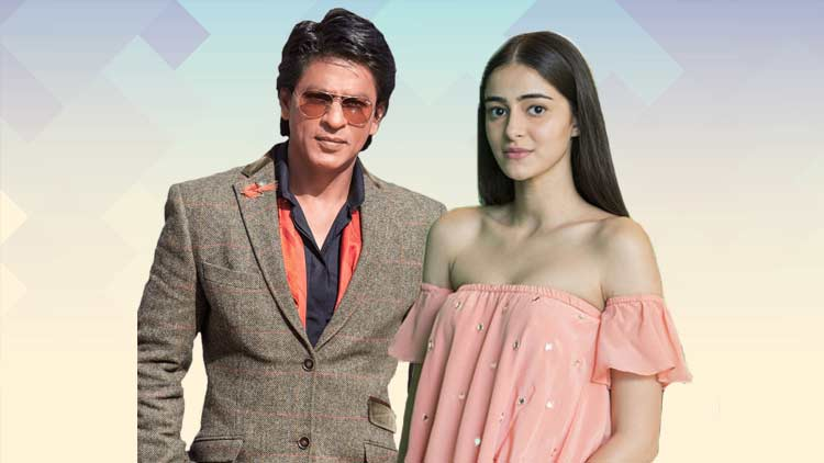 Shahrukh and Anaya Bollywood DKODING