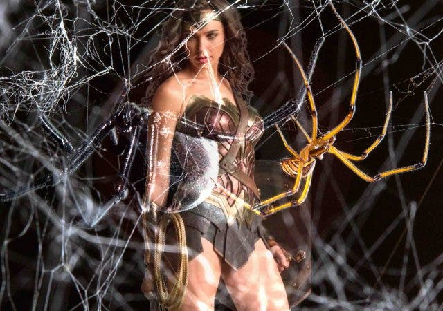 The-wonder-of-spider-silk-technology-NewsShot-DKODING