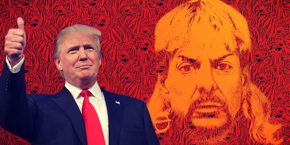 President Trump Set To Star In Netflix's Tiger King Season 2: Joe's Pardon