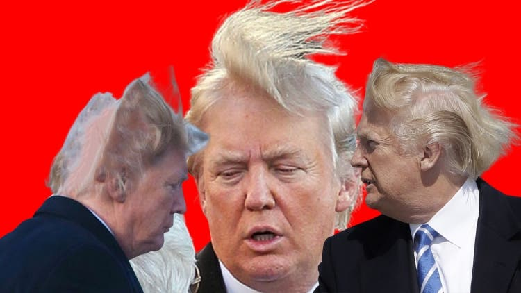 Shut up y'all, Trump hair is very real!
