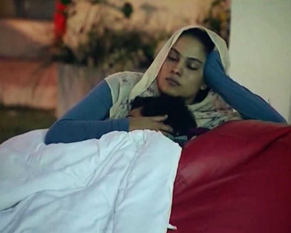 Ashmit and Veena Malik crossed the boundaries with their sensuousness in Bigg Boss