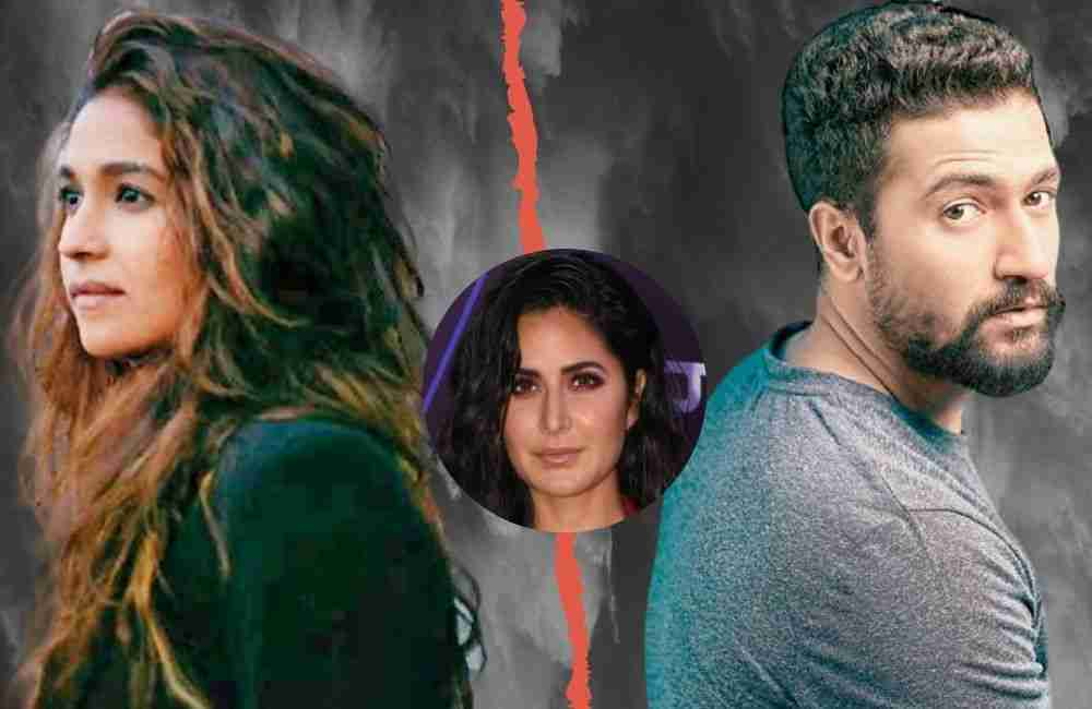 Vicky Kaushal and Harleen Sethi's breakup