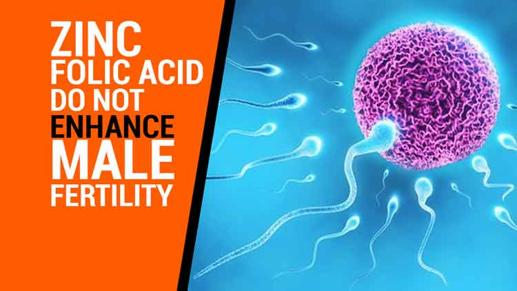 Study finds supplements like zinc, folic acid do not enhance male fertility