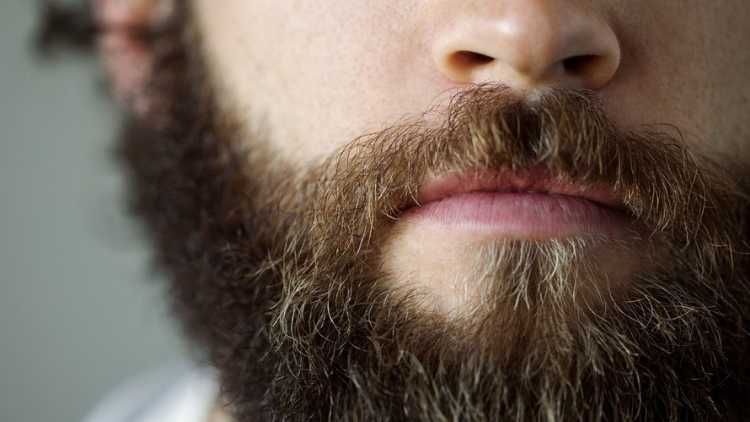 beard-man-fashion-beauty-lifestyle-DKODING