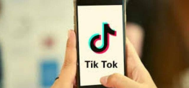 madras-hc-ban-tiktok-by-saying-its-encouraging-pornography-Business-Tech-&-Startup-DKODING